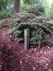 Post style wayfinding on the Castle Howard woodland path