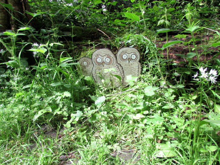 Cartoon owl signs in Castle Howard woodland