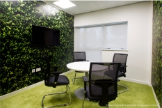 Natural leaf themed wall graphics to office meeting room